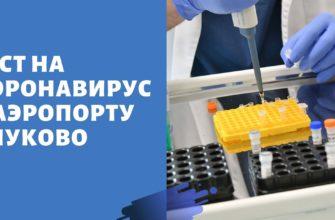 тест на коронавирус во Внуково
